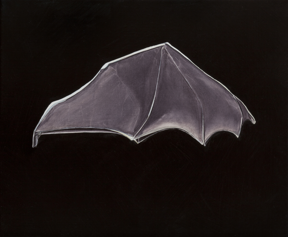 Chiroptera umbraculum, Brolly bat, oil on canvas, 25 x 30cm, 2013