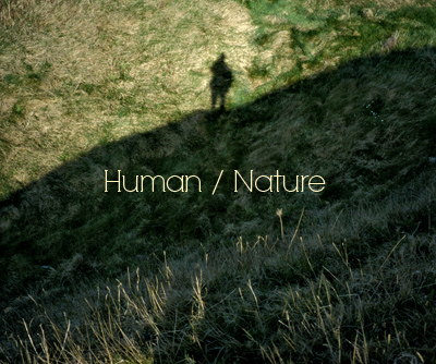 vices of human nature A treatise of human nature book iii: of morals advertisement part i: of virtue and vice in general part ii: of justice and injustice part iii: of the other virtues and vices.